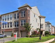 23450 SPICE BUSH TERRACE, Ashburn image