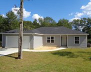 290 Lakeview Drive, Defuniak Springs image