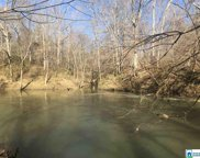 3381 River Crest Dr Unit 5, Helena image
