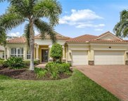 10027 Escambia Bay Ct, Naples image