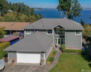 10703 Seaview Dr, Anderson Island image