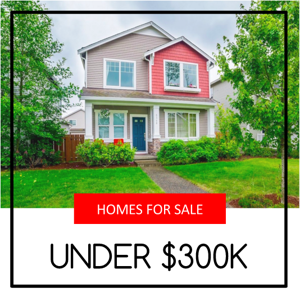 Lake Stevens Homes For Sale Under $300,000