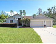 36913 Summers Ridge Drive, Dade City image