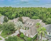 12110 San Chaliford Court, Tampa image
