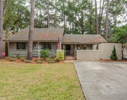 16 Wood Duck  Court, Hilton Head Island image