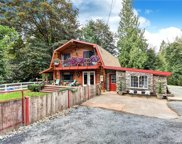 10431 167th Ave SE, Snohomish image
