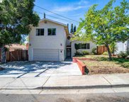 33181 Palmetto Dr, Union City image