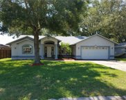 2173 Burnice Drive, Clearwater image