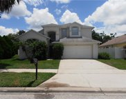 7924 Golden Pond Circle, Kissimmee image