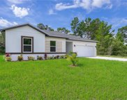 169 Willow Drive, Poinciana image
