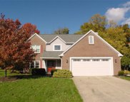 10864 Thistle Ridge, Fishers image