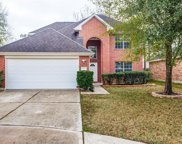 12950 Maples Perch Court, Humble image