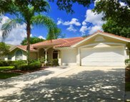 17410 Heather Oaks Place, Tampa image
