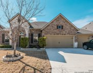 25031 Seal Cove, San Antonio image