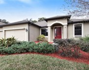 12802 Charity Hill Court, Riverview image