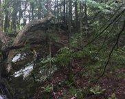 56 Pond Brook Road, Hinesburg image