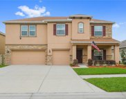 11208 Coventry Grove Circle, Lithia image