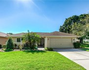 2304 Kingfisher Lane, Clearwater image