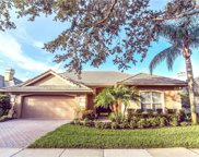 10956 Woodchase Circle, Orlando image