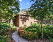 9667 Woodmont Place, Windermere image
