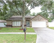 5807 Lady Bug Court, Tampa image