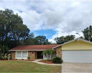 7927 Spring Valley Drive, Tampa image