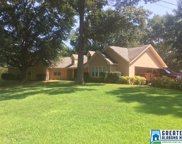 299 Maplewood Cir, Pell City image