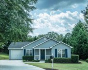 110 Ketchitan Court, Greenville image