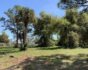 Oleander, Titusville image