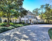 2249 Peachleaf Court, Longwood image