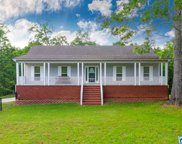 900 Mountain Crest Dr, Pell City image