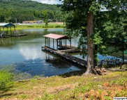 415 Pine Island Point, Scottsboro image