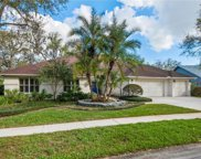 6823 Bluffs Boulevard, Temple Terrace image
