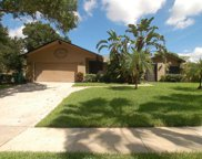 815 Rolling Hills Drive, Palm Harbor image