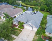 17712 Currie Ford Drive, Lutz image