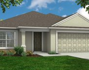 140 Black Skimmer Lane, Winter Haven image