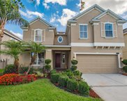 10920 Observatory Way, Tampa image
