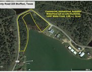 1850 County Road 225 Dr, Bluffton image