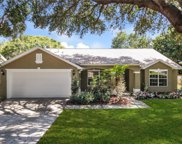 809 Maple Forest Avenue, Minneola image