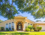 4006 Water Park Court, Riverview image