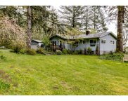 37035 H F WILLIAMS  RD, Springfield image