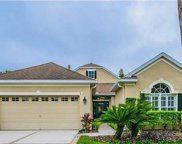 9509 Greenpointe Drive, Tampa image
