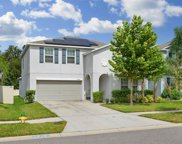 10228 Strawberry Tetra Drive, Riverview image
