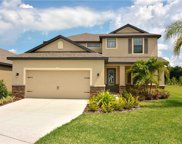 12206 Ballentrae Forest Drive, Riverview image