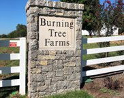 8009 Burning Tree Farms Road, Arrington image