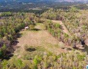 600 Dogwood Ridge Ln, Pell City image