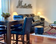 303 Criddle St Apt 213 Unit #213, Nashville image