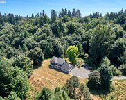 118 DRIFT CREEK NE RD, Silverton image