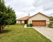 15104 General Williamson Dr, Austin image
