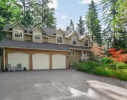 20324 194th Place NE, Woodinville image